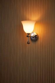 Светильник Burlington 1617/BL55 CHR для ванной комнаты в интерьере